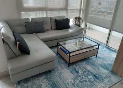 Blue White Large Carpet