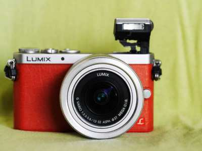 Panasonic LUMIX DMC-GM1 12-32mm lens