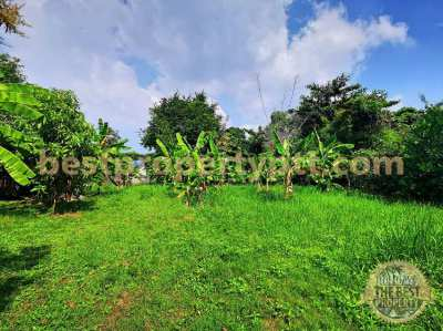 Land 1 Rai 1 Ngan (2,000 sq.m.) in Sattahip