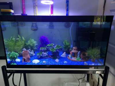 Beautiful 36 inch Fish Tank, Built-In Filter, all accessories included