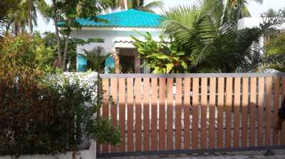 For sale 2 neighboring plots, one with 45sqm house in Koh Phangan..