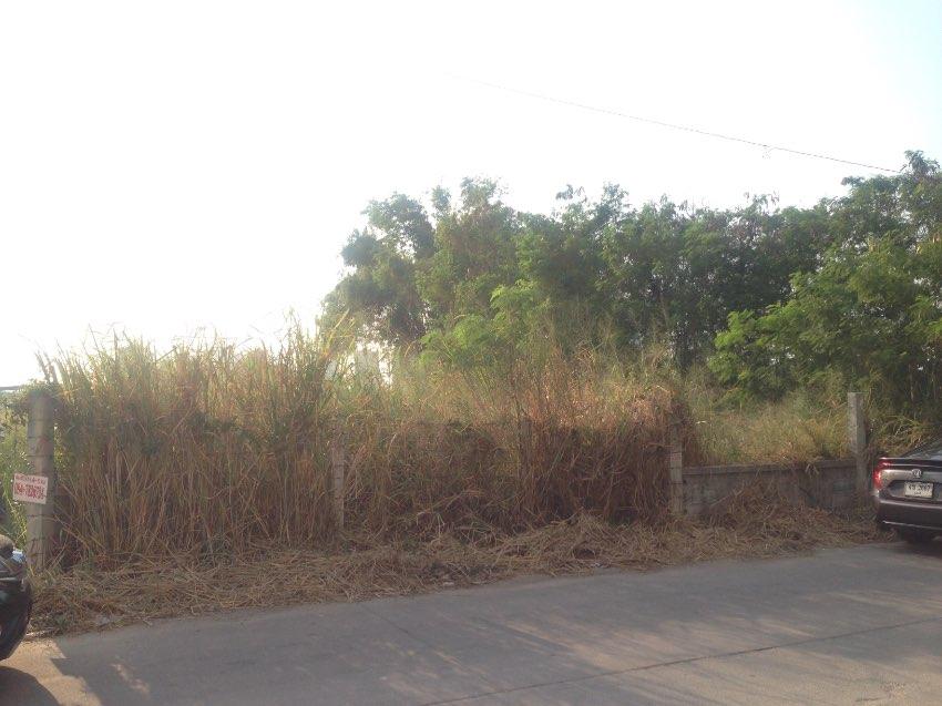 Land for sale, beautiful plot, Jomtien, Pattaya, sea side
