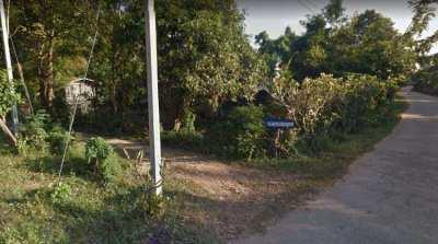 15 Rai Nong Mak , Buriram 77,450 per Rai