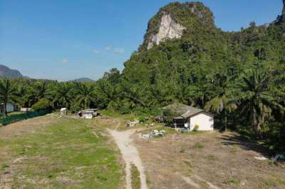 200sqm land plot for sale on quiet soi with mountain views
