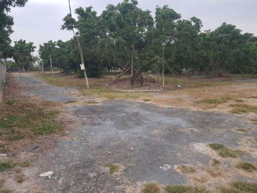 LAND 3 RAI HANG DONG WITH DAM near 108 Highway
