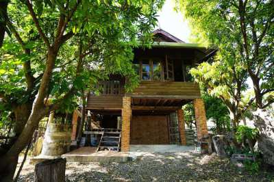 Wood house 2 bedrooms in quiet neighborhood south of Chiang Mai
