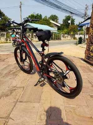 E-Bike 350 Watt Assisted Peddle Power