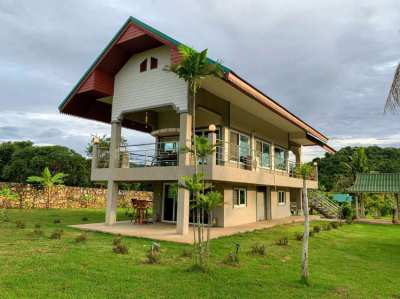 Big garden House/Resort for rent in the Bangsaray mountain area 3rai !