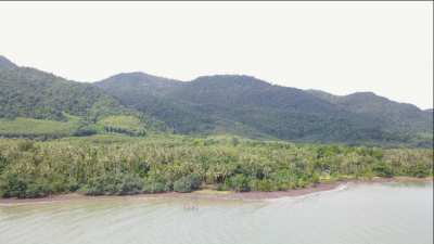 3 RAI ABSOLUTE BEACHFRONT -THE BEST VALUE ON KOH CHANG
