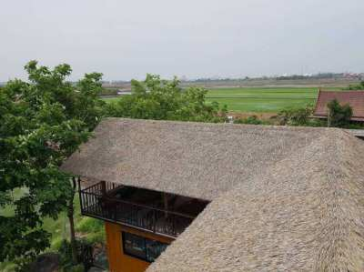 Sell ​​and install artificial grass thatched roof