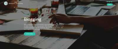 Professional Blog Articles Writing
