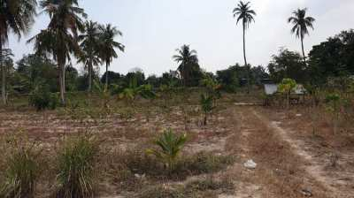 #1224    4 adjoining plots between 2 government concrete roads