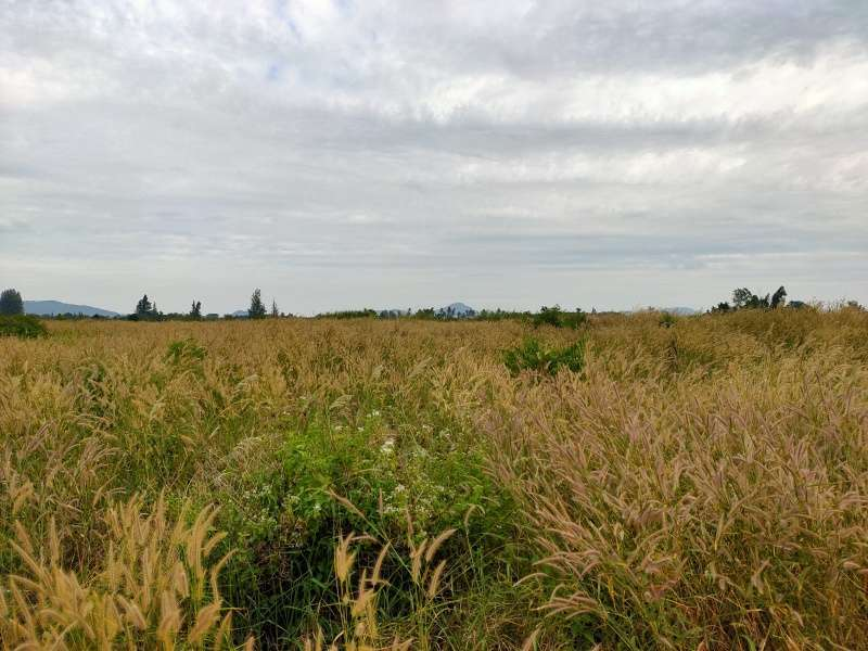 Ideal Land For Future Home Development 61-1-73 Rai