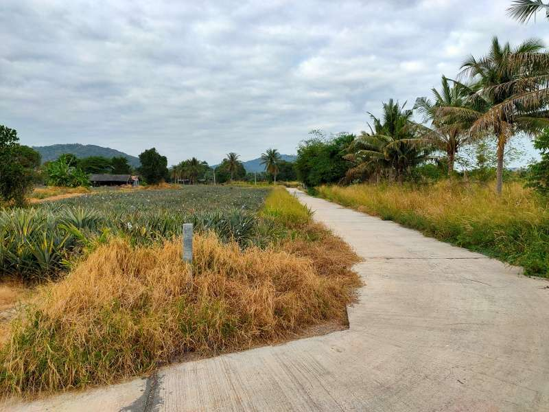 Nice Land Investment 48-2-05 Rai Plot Connecting Land Available