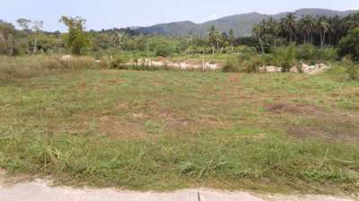 Nice plot for sale in Koh Phangan