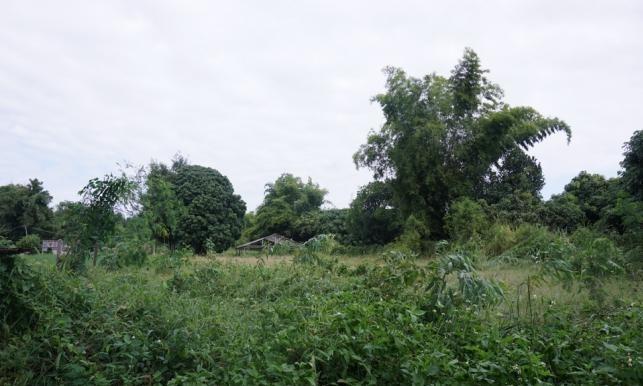 Land for sale in DoiSaKet district