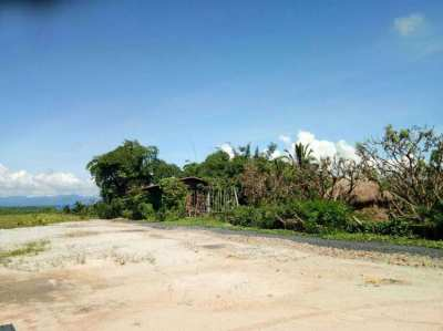 Land for sale in MaeTang district, Chiang Mai.