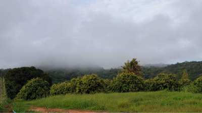 ขายที่ดินเปล่า แปลงสวย มีภูเขาโอบลอม อากาศดี วิวภูเขาและธรรมชาติที่สุด