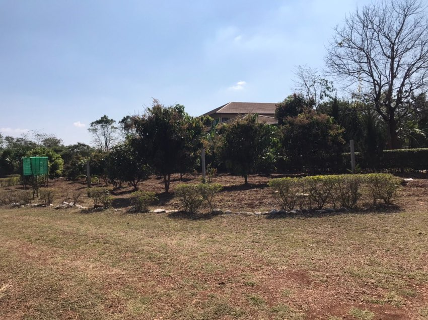 House close to Khao Yai for sales