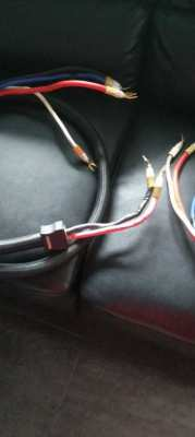 cable hight end X STREAM