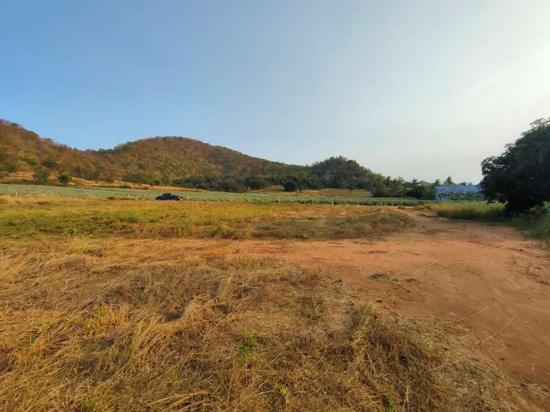 Hot! Mountain View Land Owner Will Cut 2 Rai Plot 6 Meter Wide Road