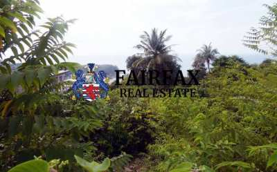 2 plots of land for sale over looking Haad Salad in Koh Phangan