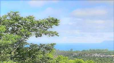 For sale land sea view in Lipa Noi - Koh Samui