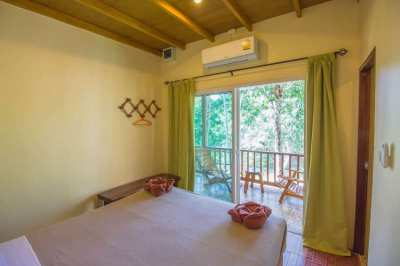 River Front Resort and house for SALE in Khao Sok National Park