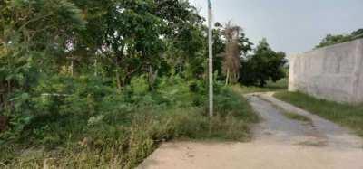 ★ Land for sale opposite Dusit Lake village, 11-1-77 rai