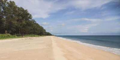 Land for sale in Phang Nga