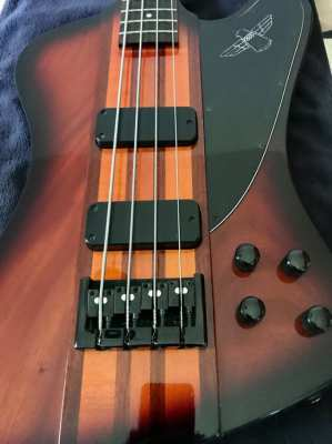Epiphone T Bird Pro IV  bass guitar
