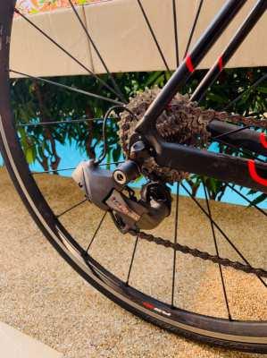 Specialised Carbon Road Bike