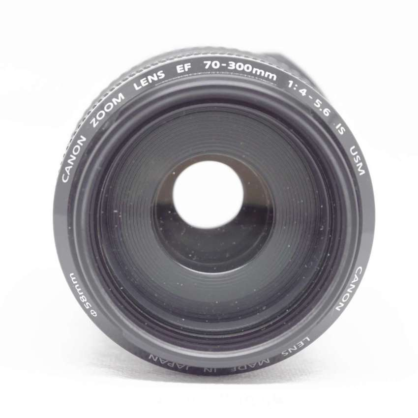 Canon EF 70-300mm Zoom Lens