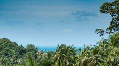 3 bed villa +2 bedroom house  land in Shri Thanu, Ko