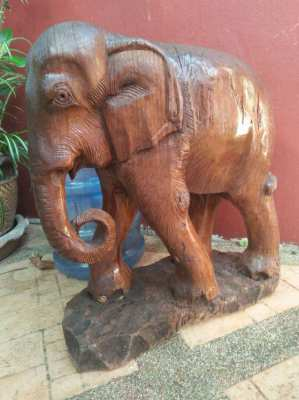Old big teak wood elephant