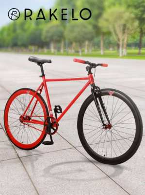 Fixed Gear Bike 55cm Frame with Free Hand Pump