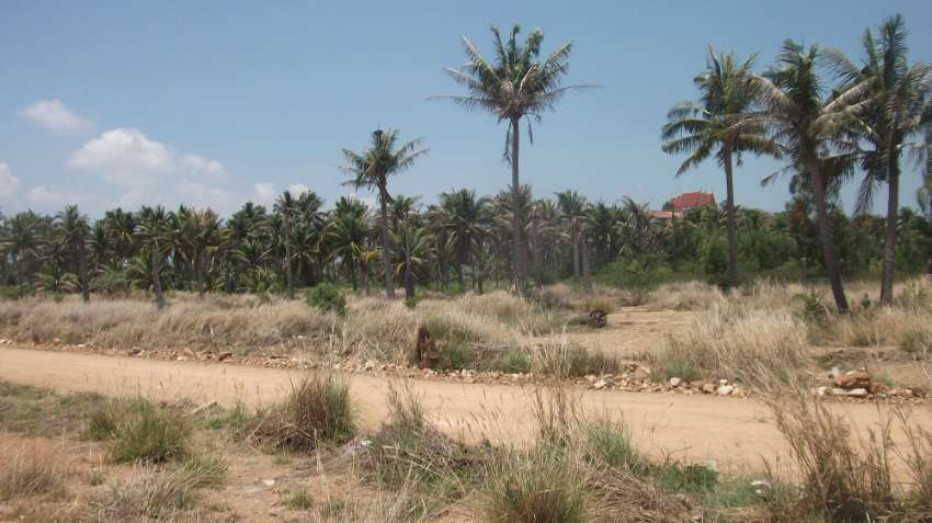 PAKNAM PRAN (HUA-HIN)   2 RAI