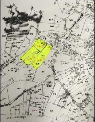 ขายที่ดิน ด่วน!! ที่นา พื้นที่สีเหลือง สามารถใช้ทำธุรกิจได้ จัดสรรได้