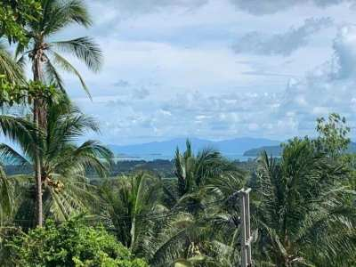 Land For Sale Samui
