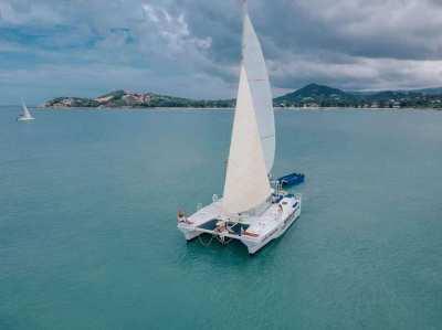 43feet catamaran (need fast sell)