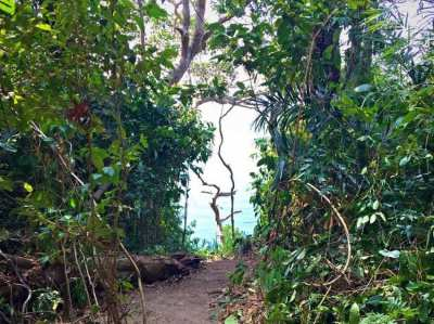 West Coast Ocean Land for sale
