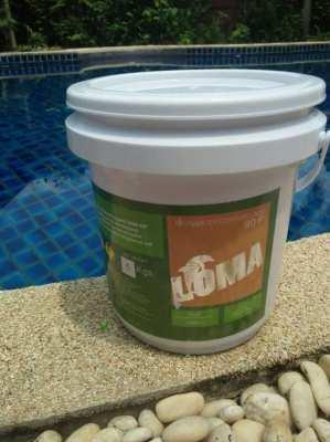 swimming pool filter sand,Chlorine.