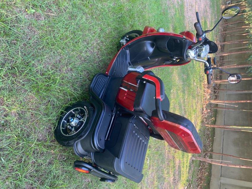 3 wheel electric bike 2020