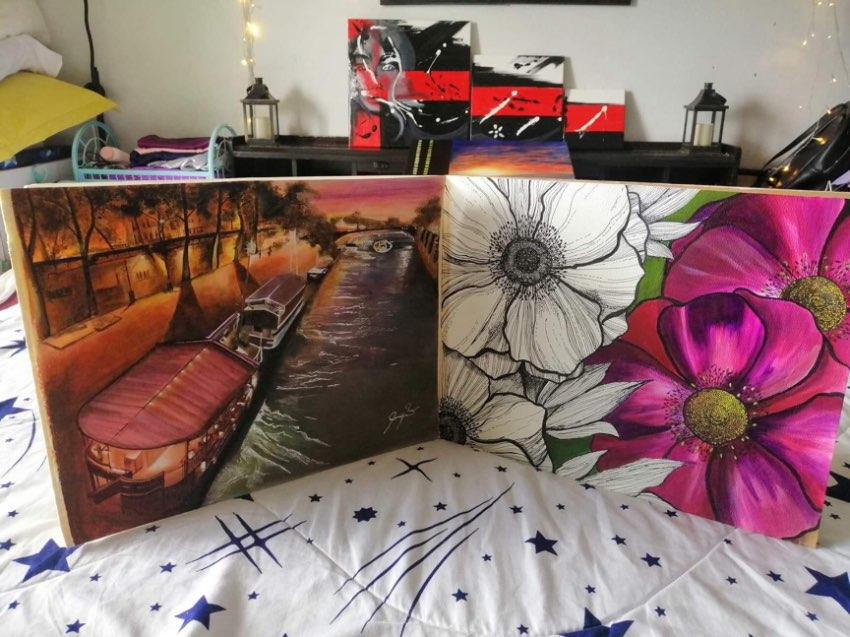 Wardrobes/book shelf & paintings