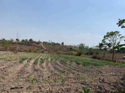 100 Rai Land for sale in Chiang Rai Province (Owners Post)
