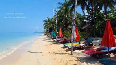 Established Beach Resort for Sale!