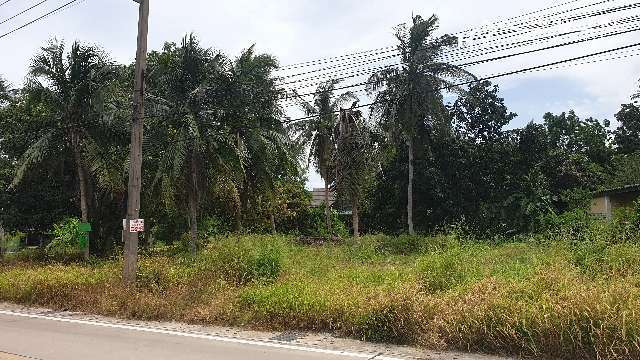 #1269   269tw in Huay Yai Jean in good neighbourhood