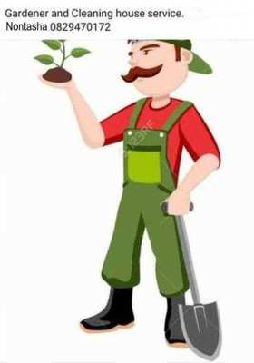 Gardener and cleaning house service Ms. Nontasha