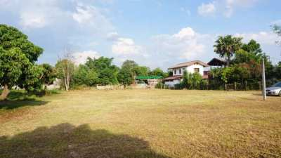 Land for sale in Sara Phi district, Nong Phueng area.