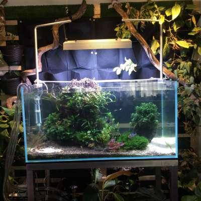 Aquarium 90cmx45cmx45cm (LID)